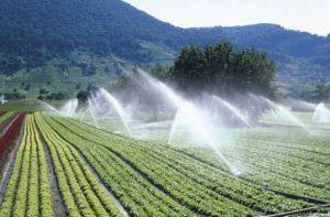 cotidianul agricol, irigatii, tva, agricultura